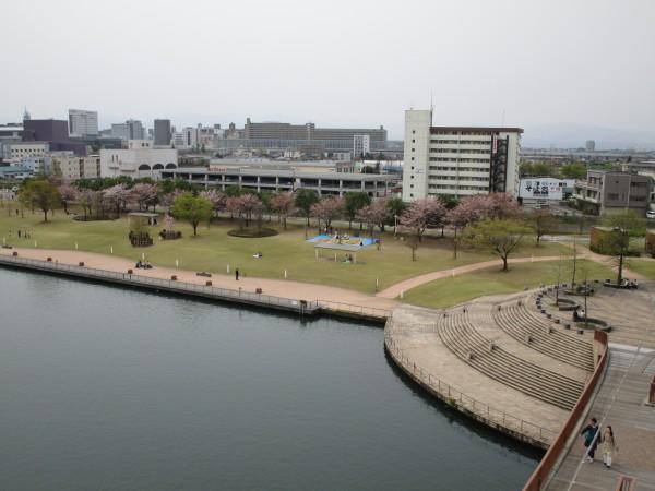 天門橋から見た環水公園の景色6