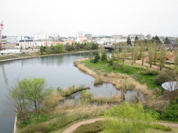 天門橋から見た環水公園の景色10